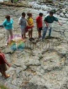 El MUJA celebra el 50º Aniversario del descubrimiento de las huellas de la Playa de La Griega