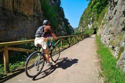 Senda del Oso en bicicleta con Oso Goloso